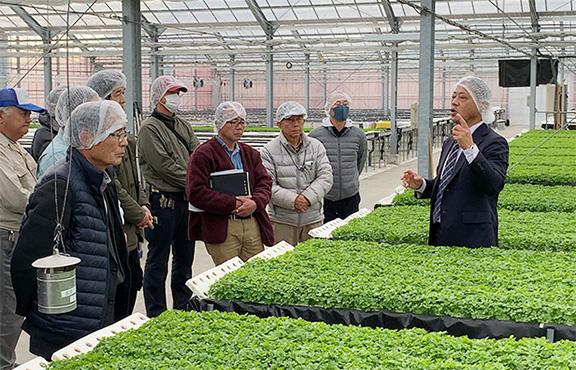 農業現場や最新設備を導入した植物工場への視察